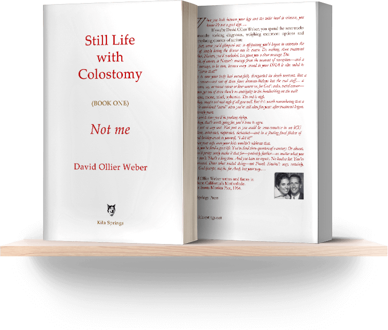 Still Life with Colostomy (Book One) Not me